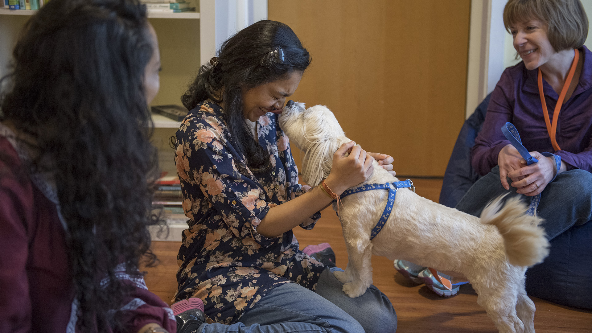 Students in Mindfulness Room with Therapy Dogs